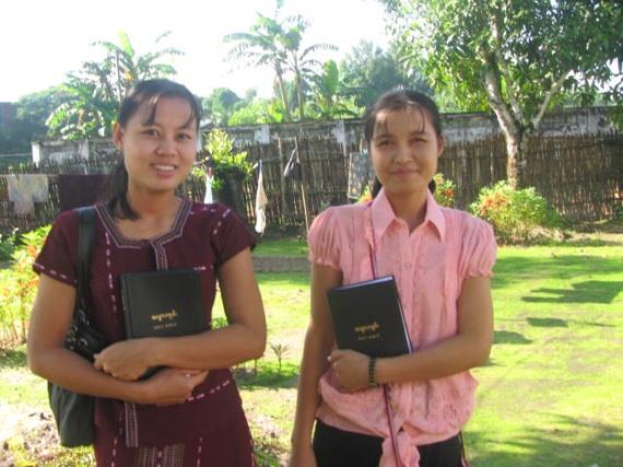 bilbes in myanmar